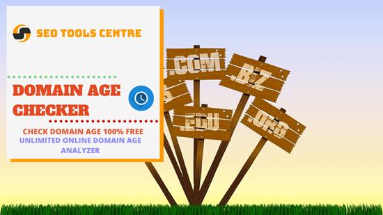 SEO Tools Centre Domain Age Checker