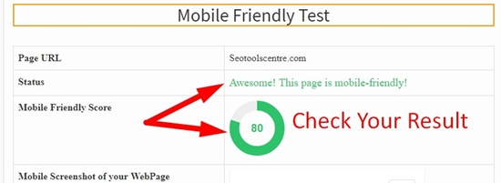 How use to Mobile Friendly Website Checker step 3