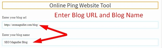 How to use Online Ping Website Tool step 1