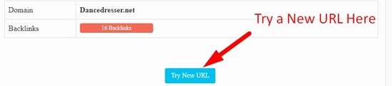 how to use backlink checker tool step 4