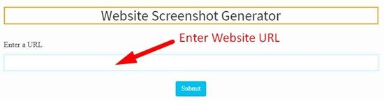 how to use website screenshort generator step 2