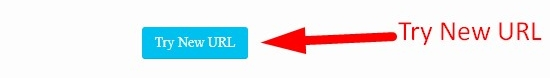 how to use website screenshort generator step 5
